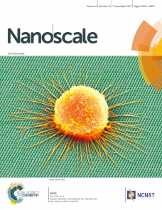 Cellular Behavior Controlled by Bio-Inspired and Geometry-Tunable Nanohairs