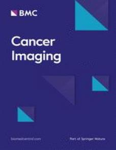 Clinical impact of variability on CT radiomics and suggestions for suitable feature selection: A focus on lung cancer image